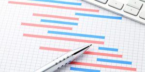 ניהול פרויקטים ותקציב IT