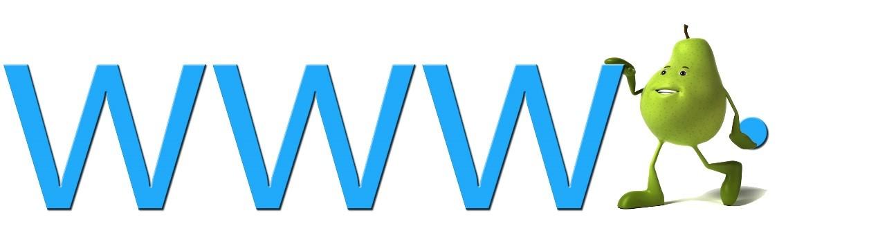 ניהול דומיין - שירות תמיכה וניתור של כתובות המייל והאתר